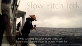 Slow jigging aksiyonları ve uygulanışı