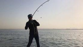 Dubai'da Balık Avı