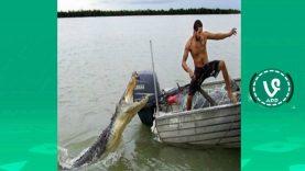 Gülmemeyi deneyeceğiniz balıkçılık videoları