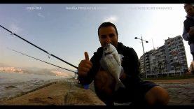 Birbirinden güzel görüntülerle kıyıdan balık avı