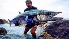 Kıyıdan king mackerel avı