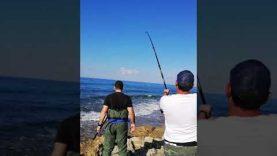 Amberjack 24kg heavy casting cyprus