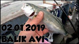 Kıyıdan ( Çinekop avı ve Sarıkanat Avı ) istanbul 2019 Balık Avları . Ve Takım Bilgisi