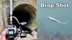 Drop Shot Tekniği