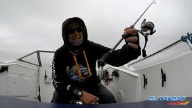 El Tanero LRF ile balık avı