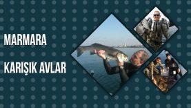Marmara Denizinin Balıkları