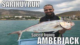 Sarıkuyruk Peşinde – Amberjack – Balık Avı Mersin