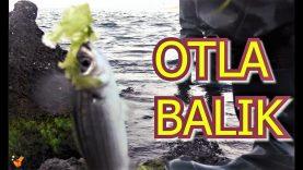 Yosun İle Balık Tutanlar (Mayıs 2019 Çanakkale)